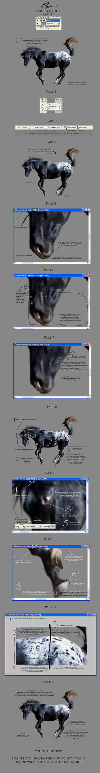 Tutorial Page 1 - Horse Body by Chassie
