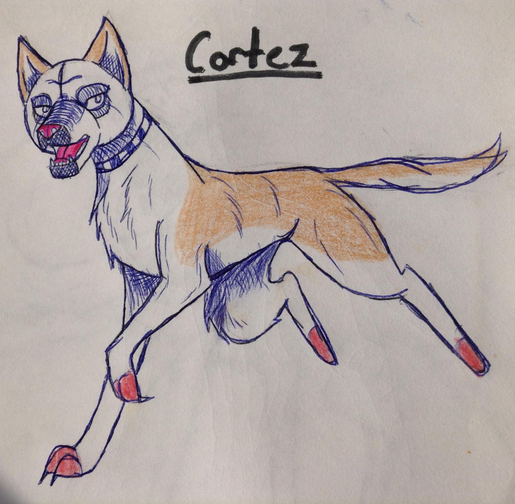 Cortez by yugiohfreakXD