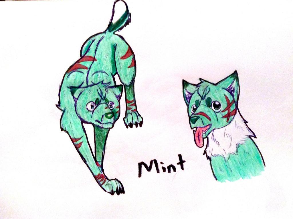 Munt or Mint by yugiohfreakXD