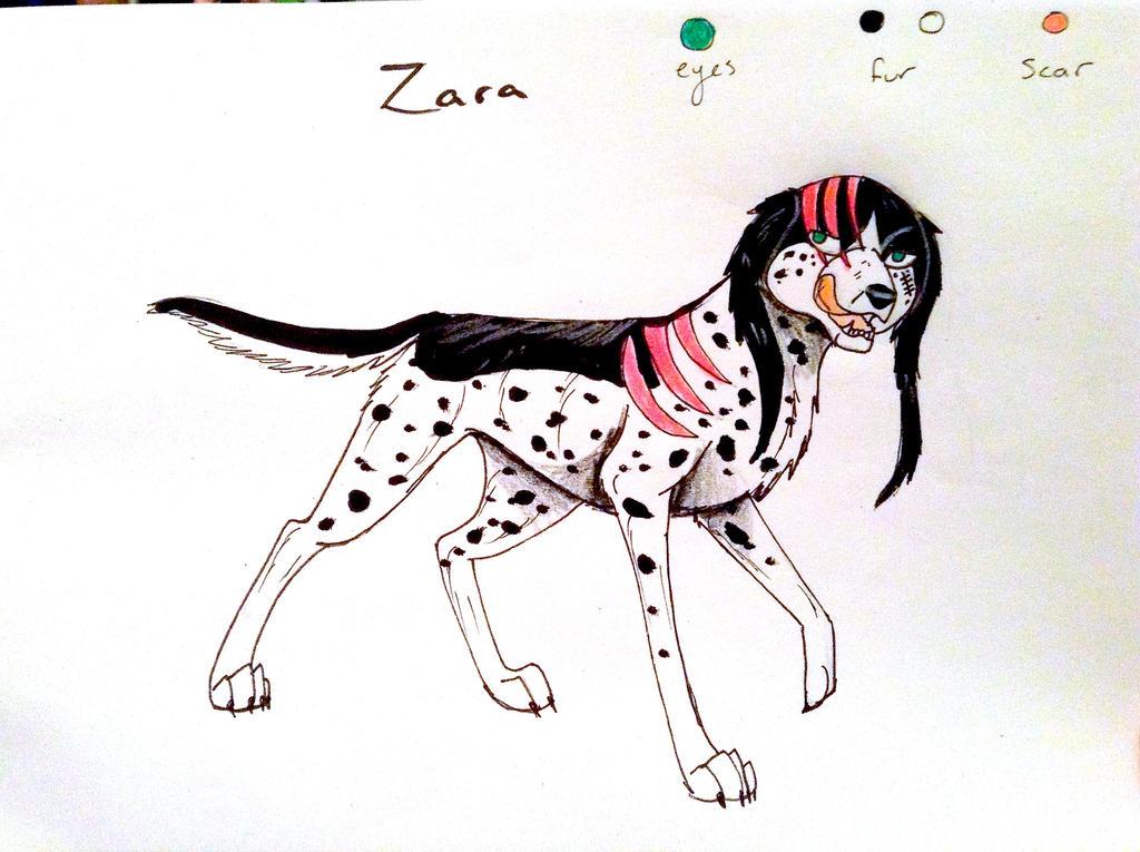 Zara by yugiohfreakXD