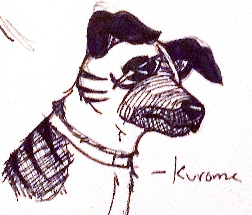Kurome Headshot by yugiohfreakXD