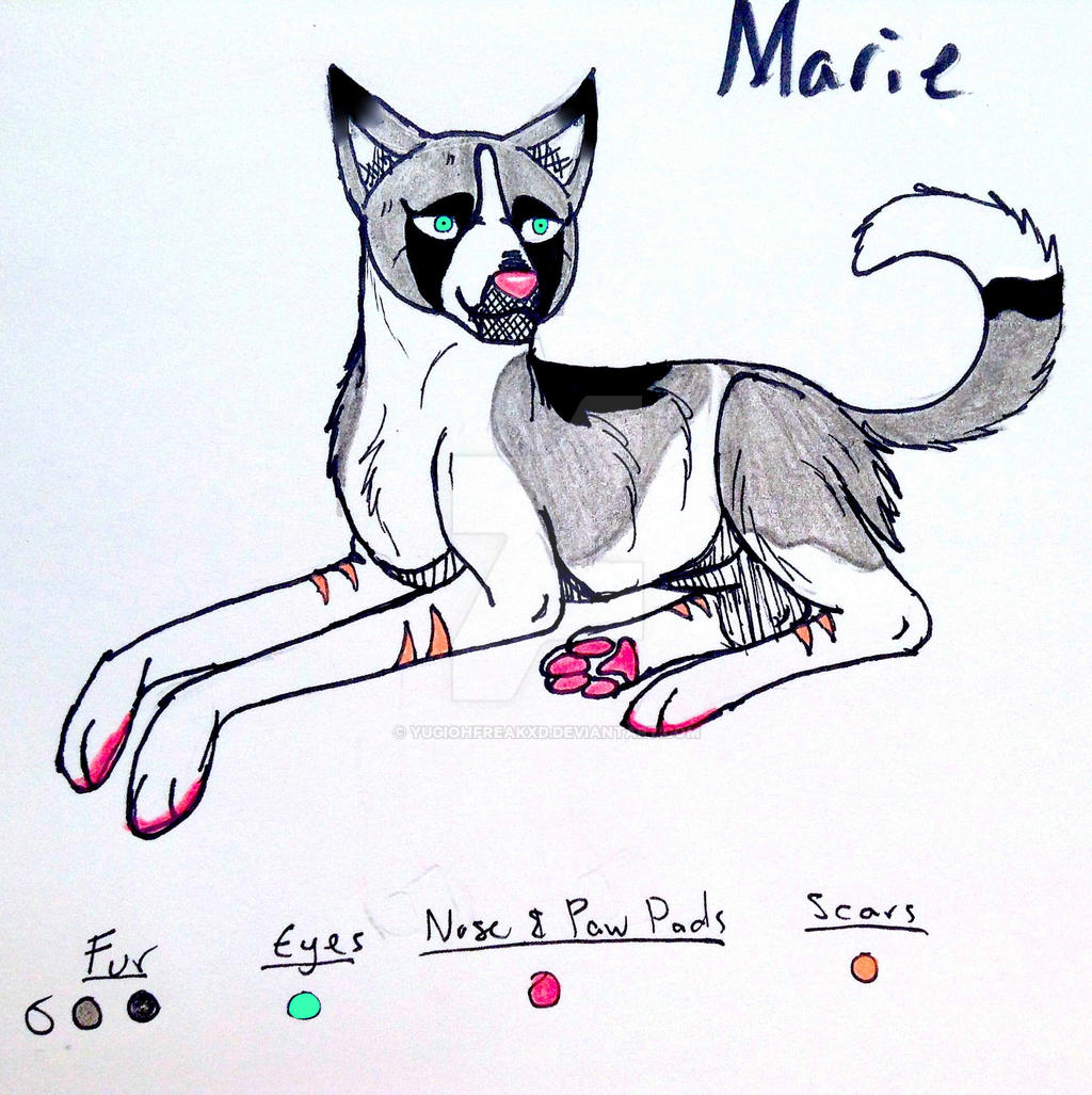 Marie by yugiohfreakXD