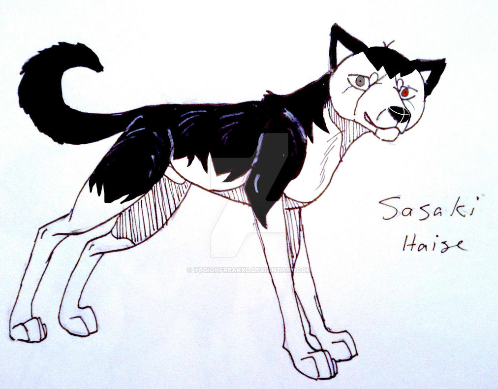 Sasaki Haise by yugiohfreakXD