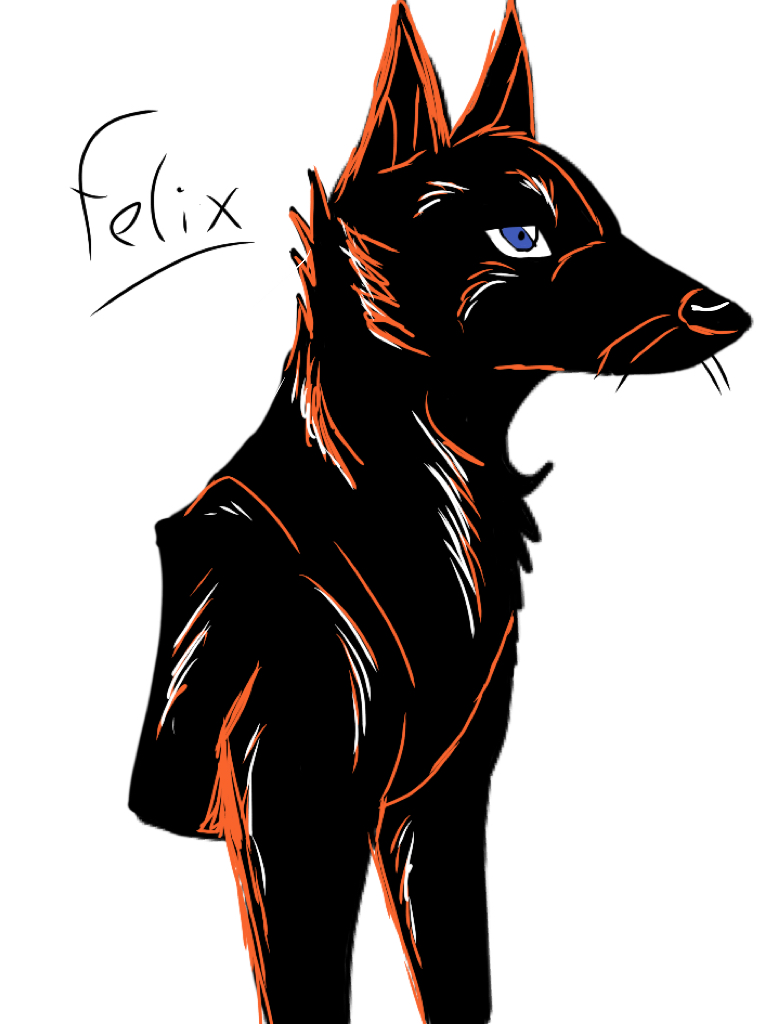 Felix by yugiohfreakXD