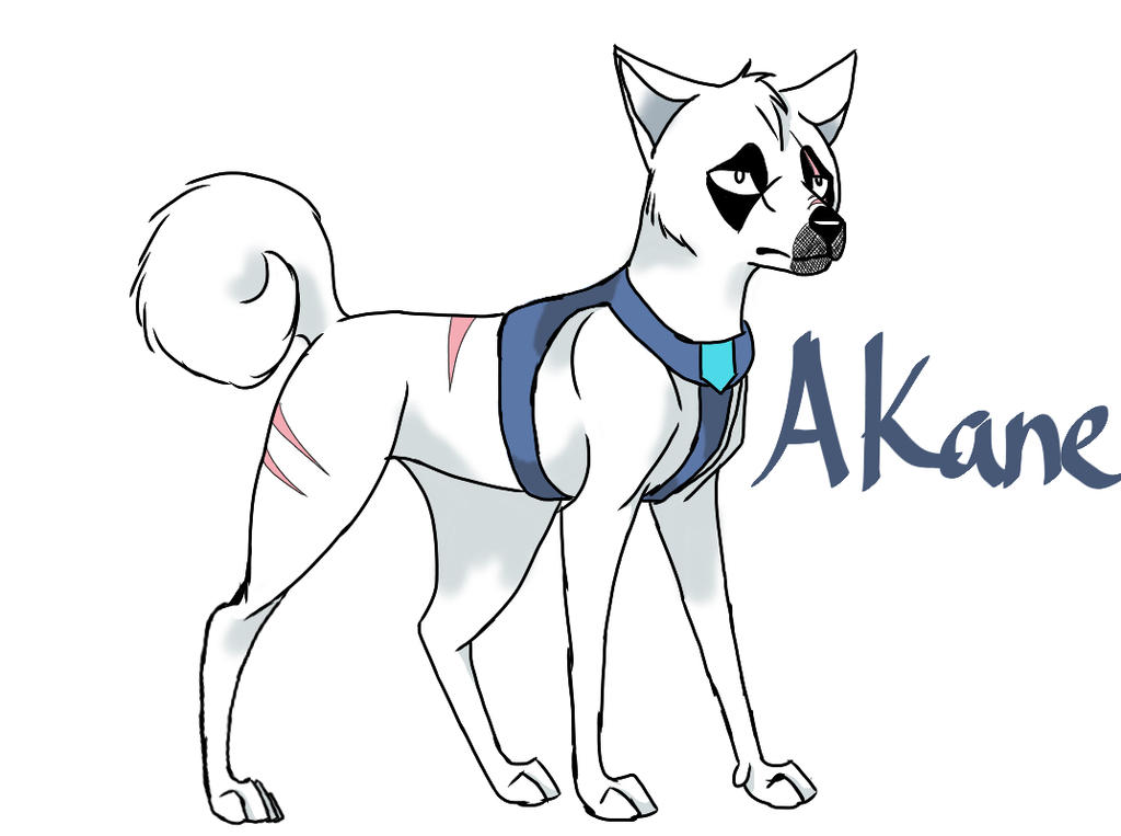 Akane (redone) by yugiohfreakXD
