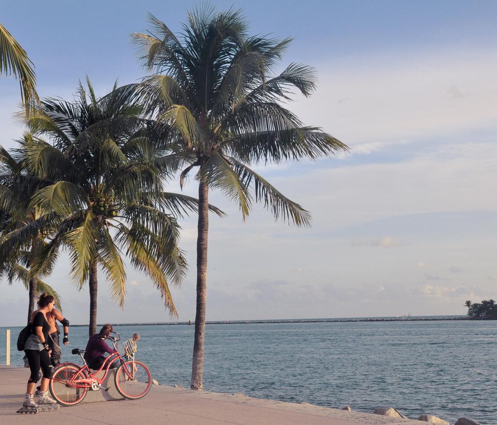 Miami by Meital-H