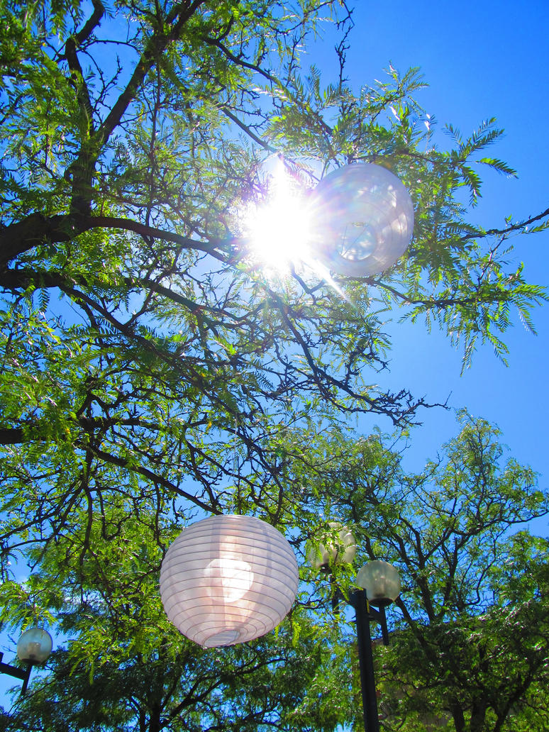 Sun lanterns by xBBS