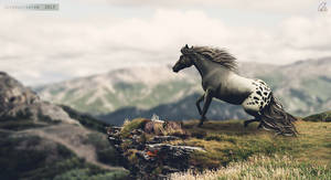 Leap of Faith by Supernatantem