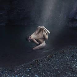 41/52 Animality - Bipolar disorder by FedericoSciuca