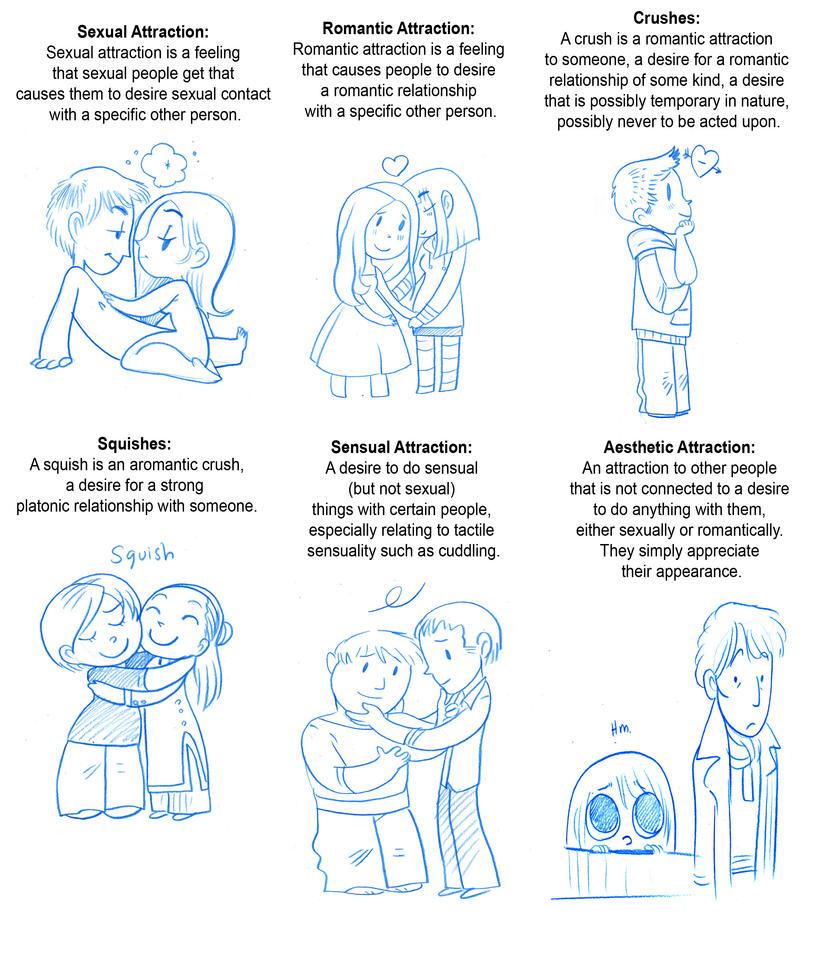 squish vs crush romantic and aromantic orientations asexual