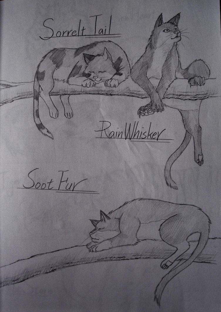 Sorrelttail, Rainwhisker and Sootfur by Marshcold