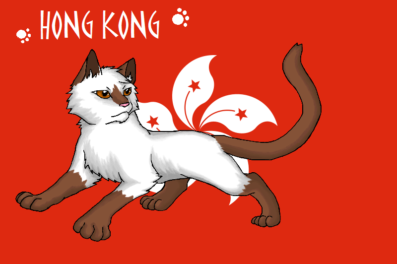 nekotalia hong kong flag by marshcold