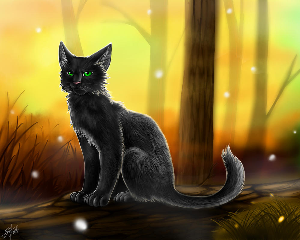 Warriors Hollyleaf By Marshcold