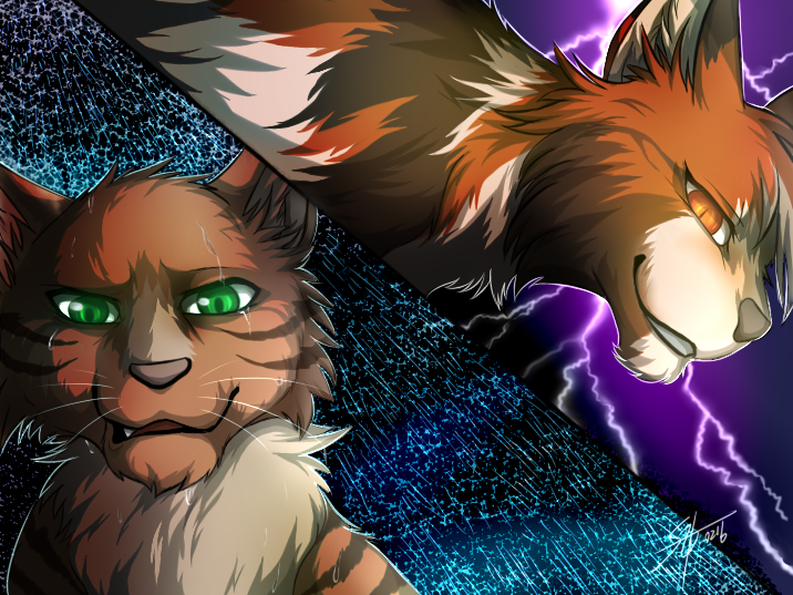 warriors mapleshade and crookedstar by marshcold on