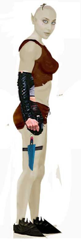 http://fc04.deviantart.com/fs8/i/2005/301/3/0/elf_by_minasmom.jpg