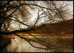Serenity by 4wingStudios