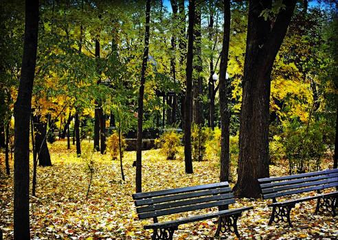 Yellow Memories 2