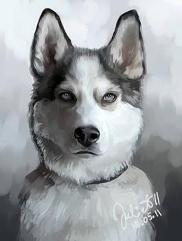 Shadow Silver Wolf