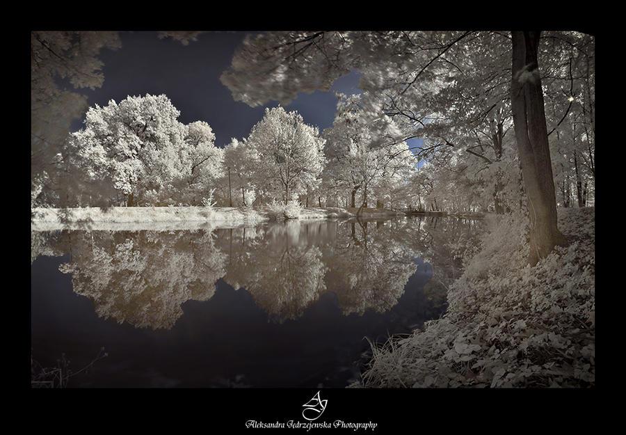 ...Bydgoszcz32... by canismaioris