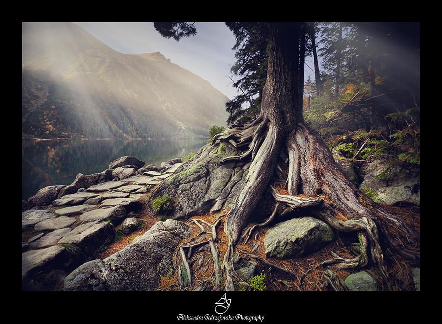 ...high Tatras... by canismaioris