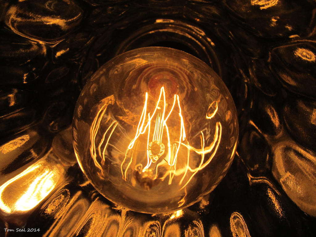 Victorian Style squirrel cage antique light bulb. by decophoto32