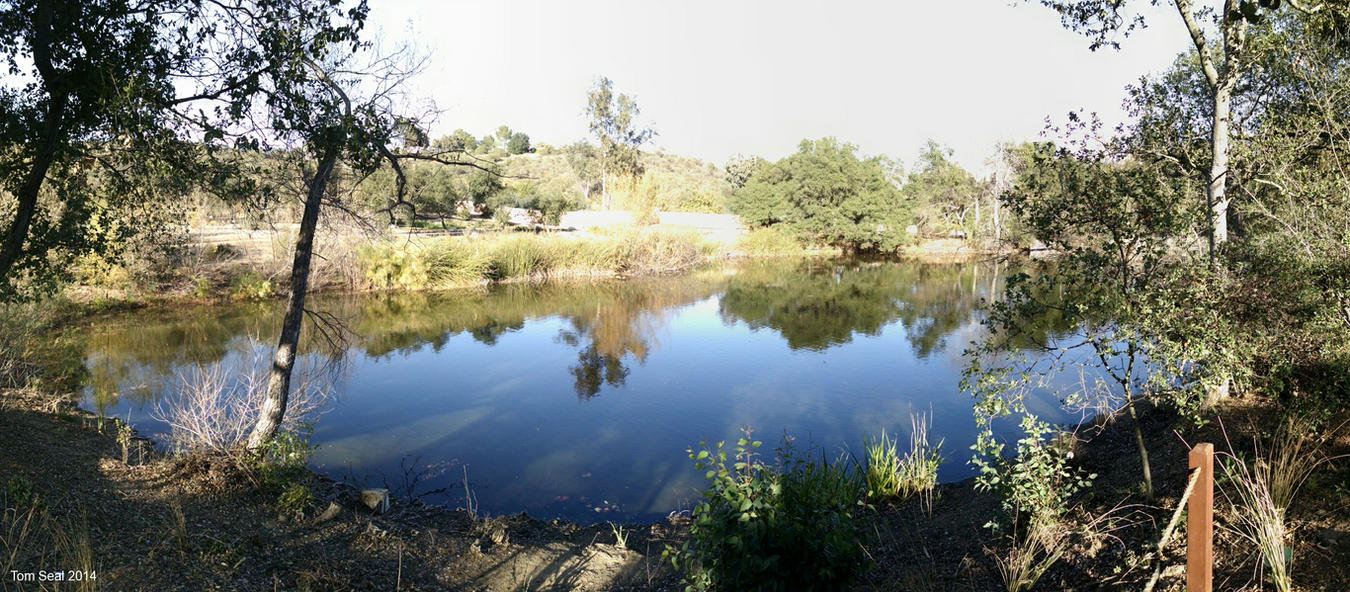 Lake Panorama by decophoto32