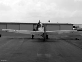 T6 Texan BW by Transportphotos