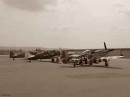 Two T6 texans and P51 Mustang by Transportphotos