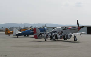 Two T6 texans and P51 Mustang color by Transportphotos