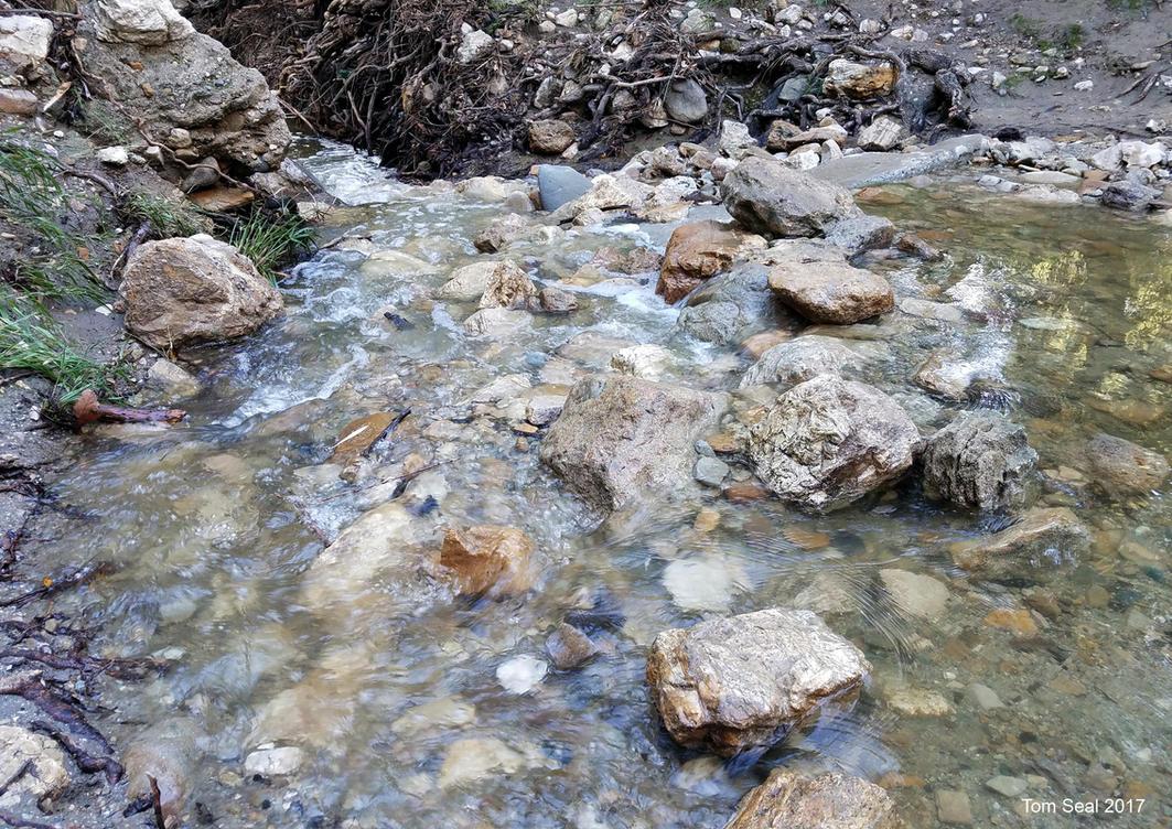 Rocky stream by Transportphotos