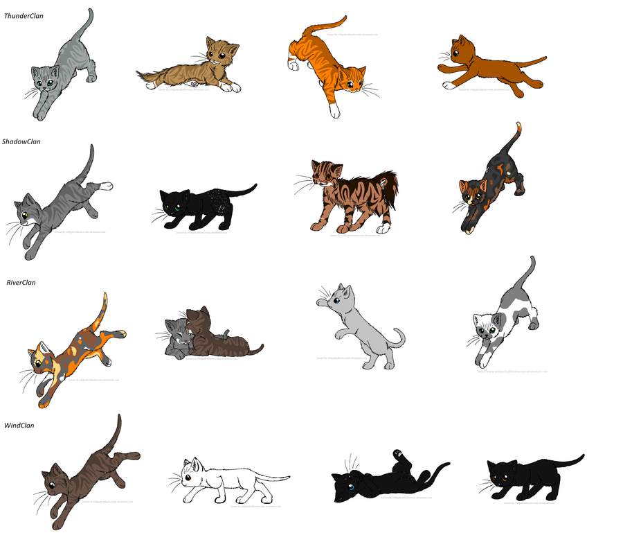Warrior Cats Game: Warrior Cat Game-Name That Cat By CometStre On DeviantArt