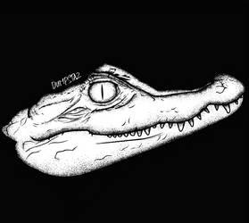 Crocodile by Dumpstaz
