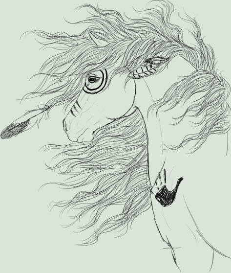 Native American Horse Drawing Indian pony sketch by