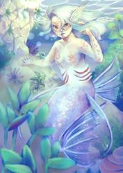Albino Angelfish