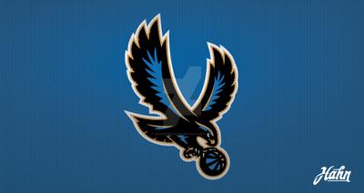 Brooklyn Skyhawks Logo Concept by designsbyhahn