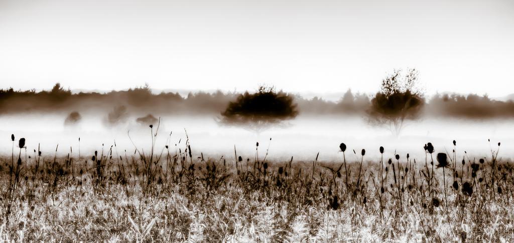 Break The Silence by Shane-Morelock