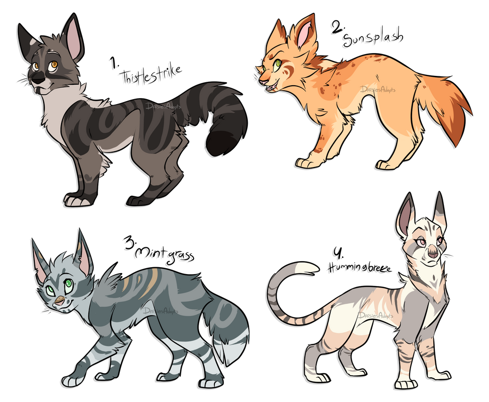 Warrior Cat Adoptables Auction Closed By Daisiesadopts