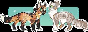 Cat adoptables   Auction   CLOSED