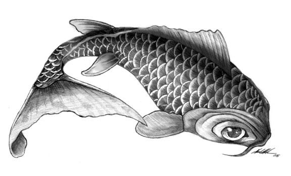 Final koi fish drawing by gorillastrations on deviantart for Drawings of fish