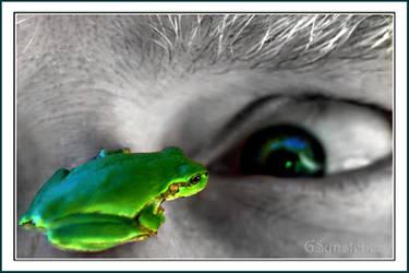 U looking at me? by UffdaGreg