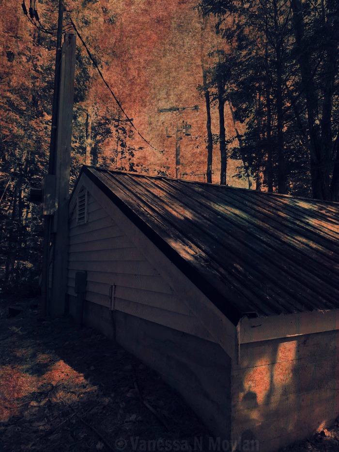This Old House by RazorbladeRomanceVNM