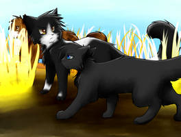 Tallstar -On Patrol- by Spottedfire-cat