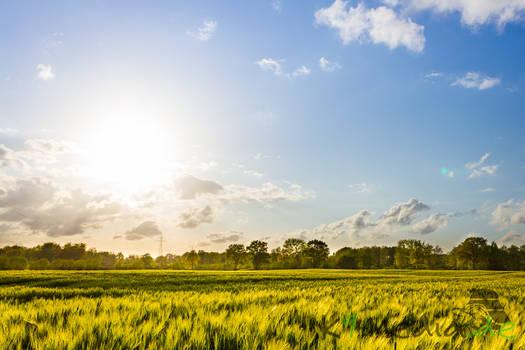 The beauty of Schleswig-Holstein