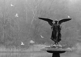 Angel II by Macegas