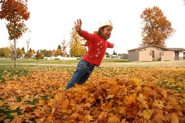 Fall Leaves by jejeel