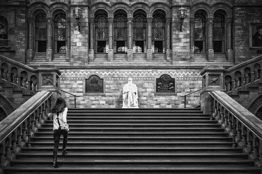Darwin and Girl by Stilfoto