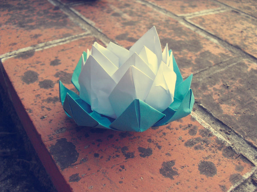origami lotus by CrisRaquel