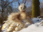 OOAK Posable ArtDoll :Owl Dragon: