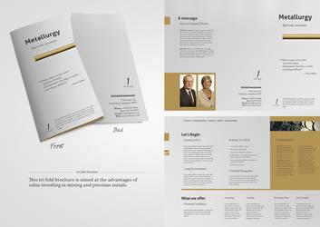 Metallurgy - Brochure by elementj
