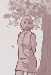 SakuraHaruno by Alasta-tyan
